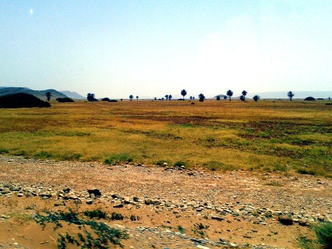 2013-07-21 pustynia3