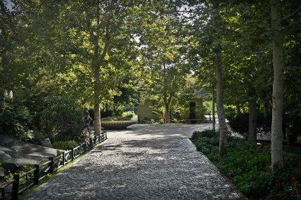 Park Laleh w Teheranie